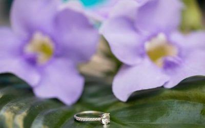 Romantic Engagement Photoshoot | Las Olas Boulevard, Fort Lauderdale