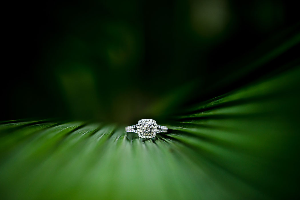 unique engagement ring shot with leaves
