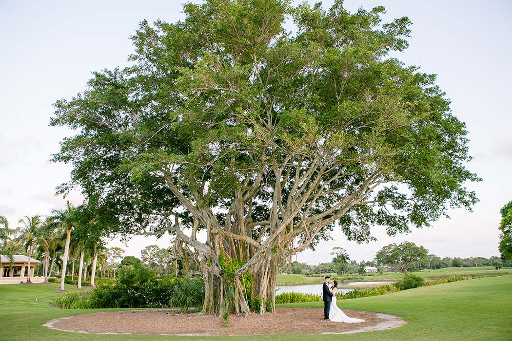 bride and groom portrait under a tree on golf course | wide angle photograph of bride and groom under tree | breakers west country club wedding bride and groom